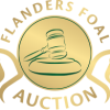 Flanders Foal Auction